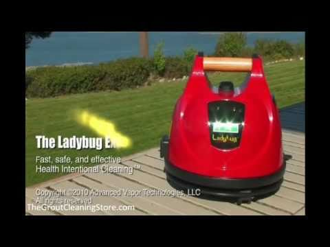 Dry Vapor Steam Cleaners Kill Bed Bugs – Perfect Grout Cleaner