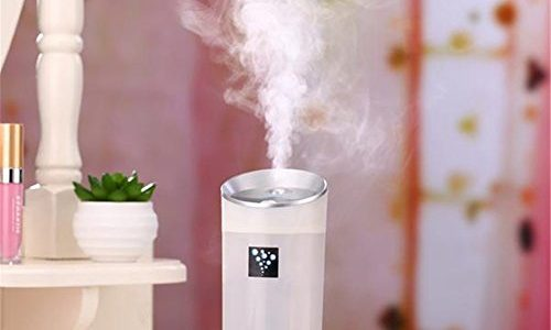 300ml Cool Mist Humidifier,Ounice Aroma Essential Oil Diffuser Car Family expenses Anion Humidifier Air Purifier Freshener With USB Interface (White)